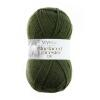 West Yorkshire Spinners Bluefaced Leicester DK - Autumn Collection Farbe: avocado green