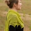 Strickmich! Originale – 20 innovative Strickanleitungen von Martina Behm Modellbeispiel Grren Light Shawl
