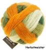 Schoppel Wolle Lace Ball 100 - Lacegarn aus Merinowolle Farbe: Herbstmeister