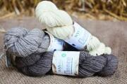 WYS Fleece  Bluefaced Leicester DK - Natural Collection