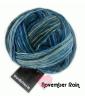 Schoppel Wunderklecks - kunstvoll bemaltes Sockengarn Färbung: November Rain