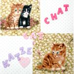 """Buchstabenhits für Kids 18mm - 2-Loch Knopf    """"C   """" - Beispielbild  """"Katze-cat-chat """""""