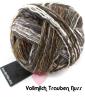 Schoppel Wunderklecks - kunstvoll bemaltes Sockengarn Farbe 2151 Vollmilch Trauben Nuss