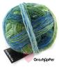 Schoppel Wunderklecks - kunstvoll bemaltes Sockengarn Farbe 2177 Grashüpfer