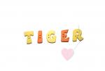 """Buchstabenhits für Kids 18mm - 2-Loch Knopf  """"R """" Beispielbild  """"Tiger """""""