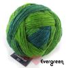 Schoppel Zauberball 100 - Sockengarn in vielen kreativen Färbungen aus 100% Schurwolle vom Merinoschaf Evergreen